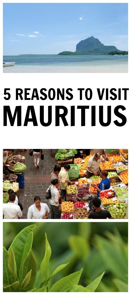 5 Reasons to Visit Mauritius