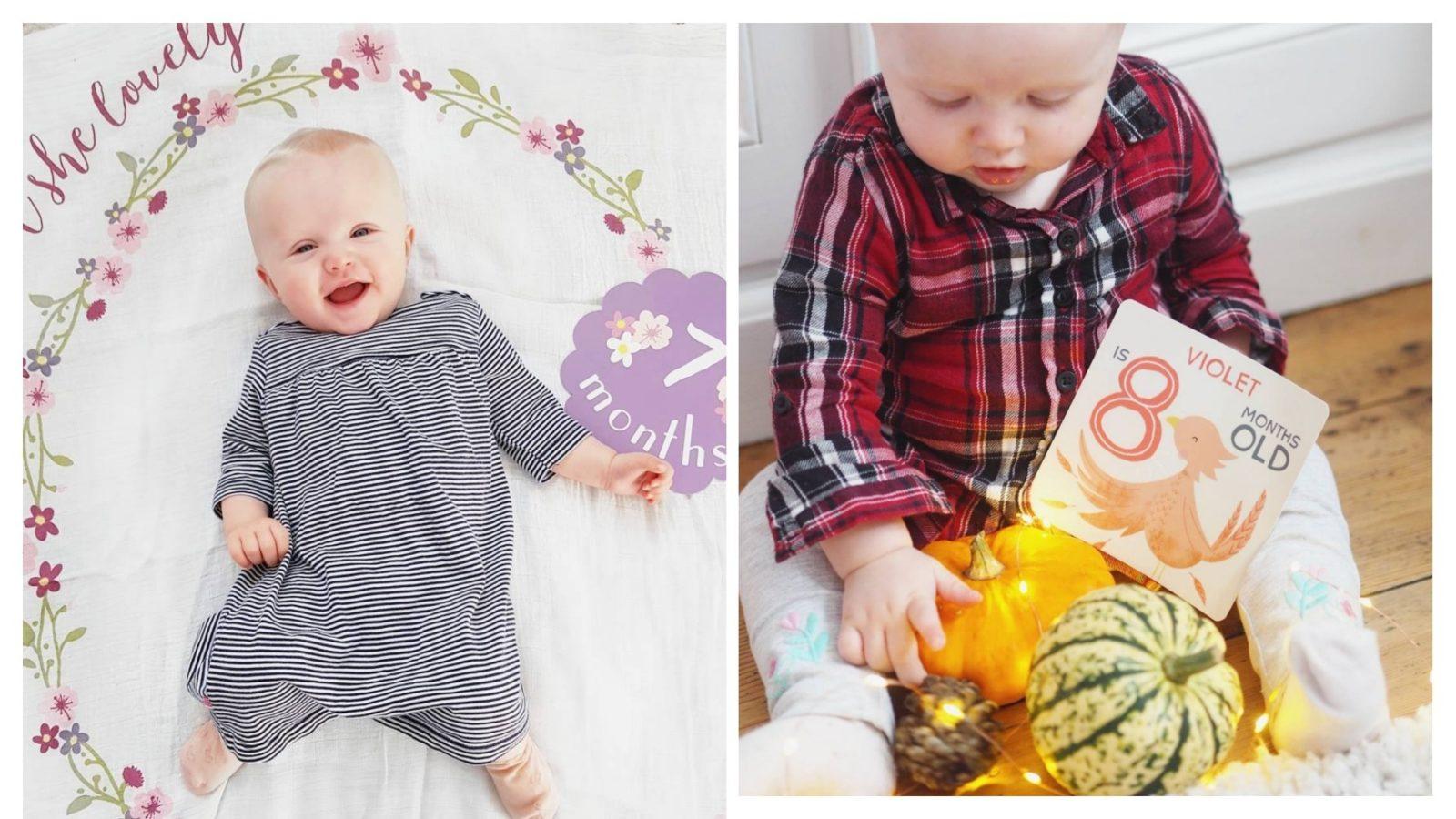 Violets Seven & Eight months update!