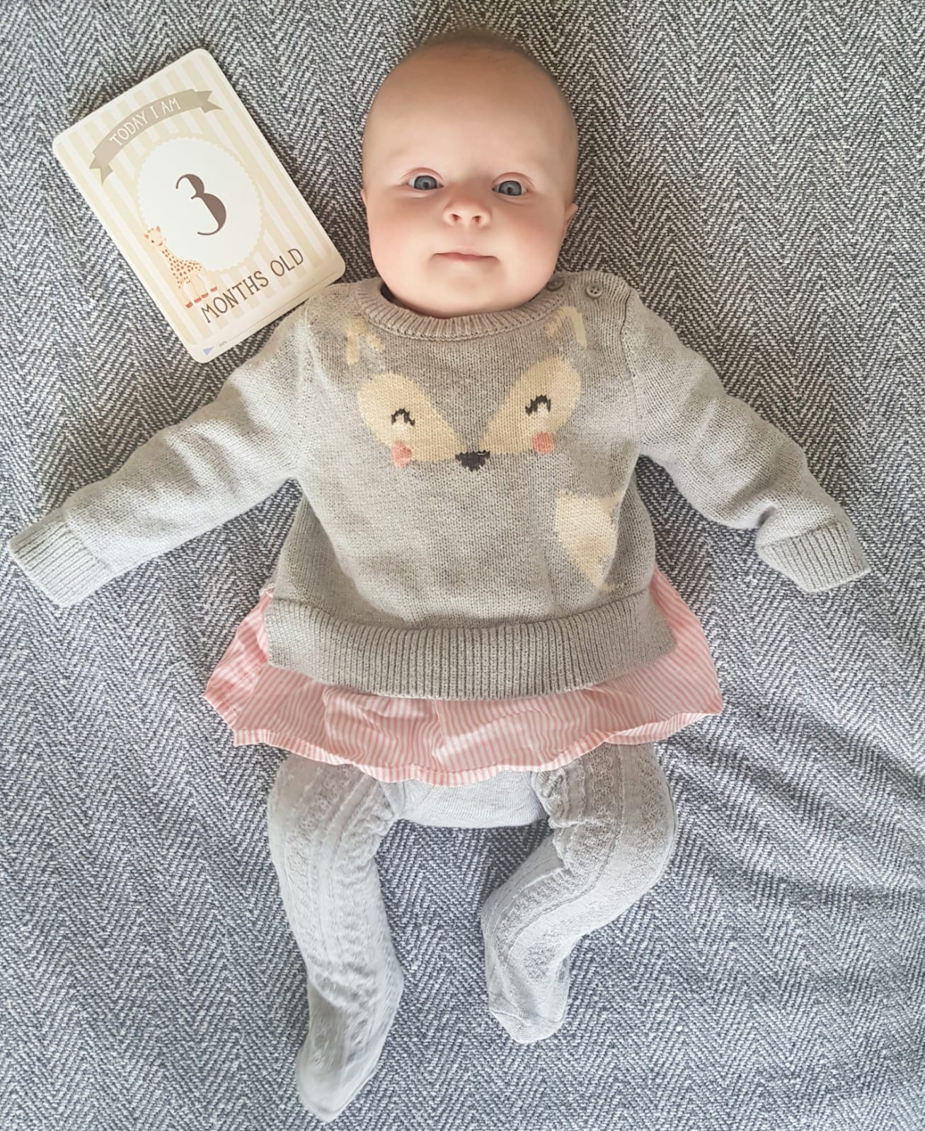 Pearl's Three Month Update